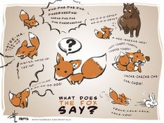 Oh my gosh!!!! Hahahaha one of my friends showed this to me yesterday it's so hilarious. What does the fox say?