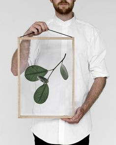 Floating Leaves | Pinterest: Natalia Escaño
