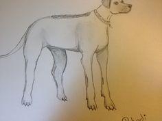 """Rhodi"" Drawn by Lauren Denard 6/20/16"