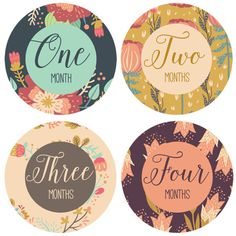 Baby Monthly Milestone Stickers  Baby Month Stickers for