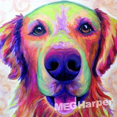 Brynn ~ Pet Dog Portrait ~ Meg Harper ~ Meg paints pets from a photo — Meg Harper Art   Are you looking for a painting of your magnificent pet? Have Meg create a pet portrait just for you, today.    #dog #puppy #best friend #inspirational #kindness #animalpainting #art #painting #pets #petportrait #animal #love #megharper #megharperart