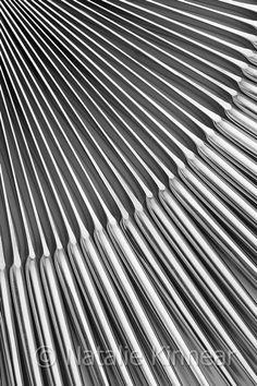 Knives IV ©Natalie Kinnear Line Photography, Object Photography, Shadow Photography, Pattern Photography, Surrealism Photography, Photography Projects, Abstract Photography, Still Life Photography, Artistic Photography
