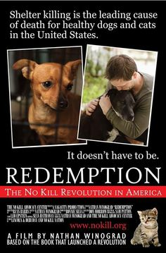 Shelter killing is the leading cause of death for healthy dogs and cats in the United States. It doesn't have to be.Join me in Minneapolis on June 6 for the premiere of Redemption, my film about the No Kill revolution in America.  Tickets: www.animalarkshelter.org/redemption/ More information, go to: www.nokill.org Trailer: http://vimeo.com/48445902