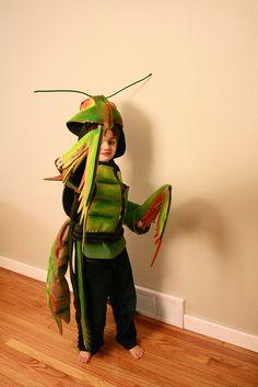 The Praying Mantis!!!! by r a e d e k e, via Flickr