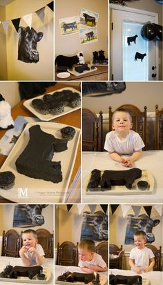 Angus cow cake, cattle, Four Year Old, Birthday Party… Cow Birthday Parties, Baby Boy 1st Birthday, Farm Birthday, Birthday Cake, Birthday Ideas, Happy Birthday, Cow Cakes, Show Cattle, Football Birthday