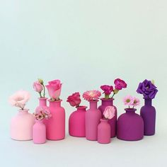 """Currently my absolutely favourite color account!⠀ """"All the pink! 🐷🌸👛💗🎀🎟🌺🍇💟👾⠀ Some previous styling for Ann Taylor {not sponsored, just sharing}""""⠀ . Bottle Painting, Bottle Art, Bottle Crafts, Fuchsia Flower, Colorful Flowers, Make Blog, Diy Home Crafts, Rose Petals, Paper Crafts"""