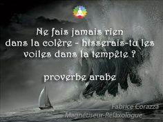 proverbe arabe : ne fais jamais rien dans la colère. Hisserais-tu les voiles dans la tempête ?