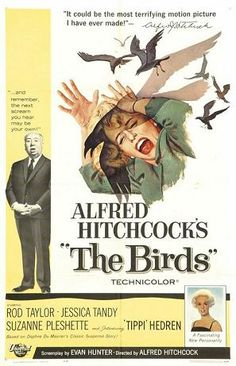 Alfred Hitchcock's 1963 movie, The Birds! Still one of the best Creep-you-out flicks ever made! Classic! Starring: Rod Taylor, Suzanne Pleshette, and Tippe Hedren.
