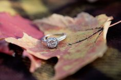 Fall engagement ring photo