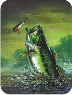 East Urban Home Amish Bass Cutting Board Fly Fishing Tips, Sea Fishing, Going Fishing, Trout Fishing, Bass Fishing Pictures, Recumbent Bike Workout, Cleaning Fish, Fish Wallpaper, Fish Crafts