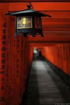 Torii ( temple gates) Japan