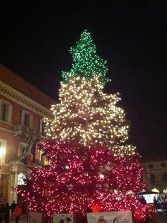 Merry Christmas From My European Travel Italy BoardAn Italian Tree Ive Mixed Red White And Green Lights On A Before But Never Quite