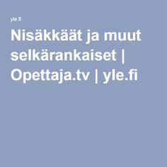 Nisäkkäät ja muut selkärankaiset | Opettaja.tv |yle.fi