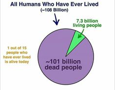 Human Evolution, Did You Know, Chart