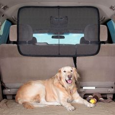 Dog Screen Guard for The Boot Trunk Car Seat -- Click image for more details. (This is an affiliate link and I receive a commission for the sales)