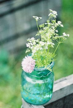 Simple bouquet in a jar ~ Queen Anne's Lace and Clover