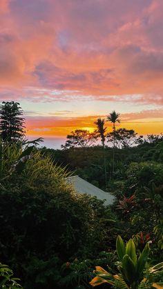 Vegan Desserts, Vegan Recipes, Green Cleaning, Sunset Photography, Photo Dump, Nice View, Banana Bread, Hawaii, Outdoor