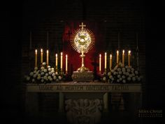 Blessed Sacrament Adoration | blessed be jesus in the most holy sacrament of the altar source ...