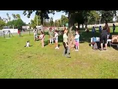 Kutyafuttató átadása Youtube, Dolores Park, Soccer, Music, Musica, Futbol, Musik, European Football, Muziek