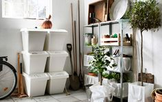 Inside a garage with storage boxes arranged on one wall, and two metal shelving units filled with gardening equipment and plants on the other wall.