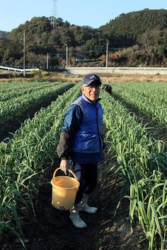 Garlic farmer. Grandfather, 79, Japan.