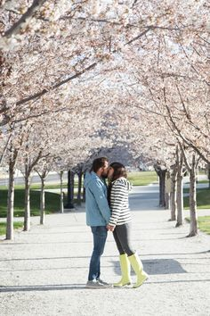 Blossoms at the Utah State Capitol - Kelsey Bang in Joules