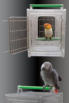 http://www.getbirdstuff.com/getbirdstuff/travel-cage-for-birds-by-paradise-ff8081811e445a5a011e4aef44090746-p.html