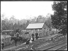 Slab house, Gully Line, Cardiff, NSW (not dated)