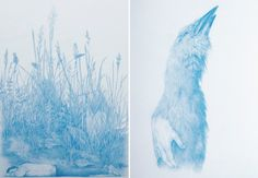 """Zachari Logan, from the """"Wilderness Tips"""" series, which focuses on the human figure as a blooming landscape. Left, """"Tales of an Imaginary European 7"""", and right, """"Tales of an Imaginary European 4"""", both blue pencil on mylar, 2012"""