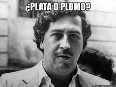 Pablo Emilio Escobar Gaviria (December 1949 – December was a Colombian drug lord and narcoterrorist. He was an elusive cocaine trafficker and a rich criminal. In he had a short-lived career in Colombian politics. Pablo Emilio Escobar, Gangsters, Pablo Escobar Frases, Pablo Escobar Money, Colombian Drug Lord, Real Gangster, Gangster Movies, Drug Cartel, Religion