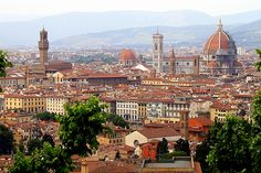 "Florence Italy - Florence is one of those cities that you cannot visit in a day let alone an hour...this is a beautiful city filled with Art and a must stay and visit place...what we did see made me want more and more....""on my list to go back """