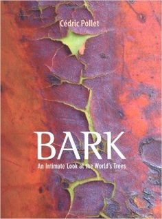 Amazon.com: Bark: An Intimate Look at the World's Trees (9780711231375): Cedric Pollet: Books