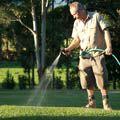 watering your sw lawn - http://www.buffaloturf.com.au.