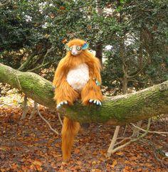 blue-footed lemur fay