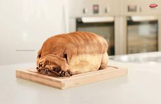 The dog looks like a loaf of bread. strange but creative  55 Brilliant Advertising Posters With High Impact