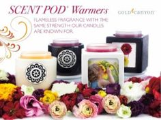 No flame, no problem, You can still get all the fragrances with no flames. https://www.profiletree.com/sarahscandlz #candles, #handmade, #crafts, #decoration, #fragrance, #christmas, #body, #home, #products, #accessories, #canyoncandles,