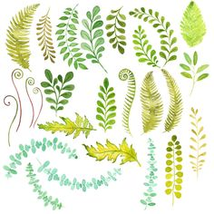 Watercolor Foliage: art and ideas for your next project                                                                                                                                                                                 More