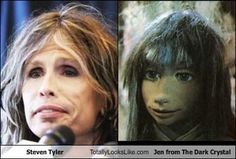 Steven Tyler Totally Looks Like Jen from The Dark Crystal