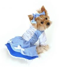 Dorothy Costume for Dogs http://on.fb.me/1g0JlXy
