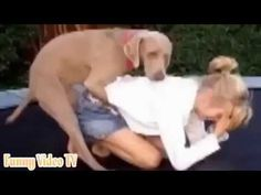 lustige tiervideos zum totlachen - A girl and dogs mating woman sleep
