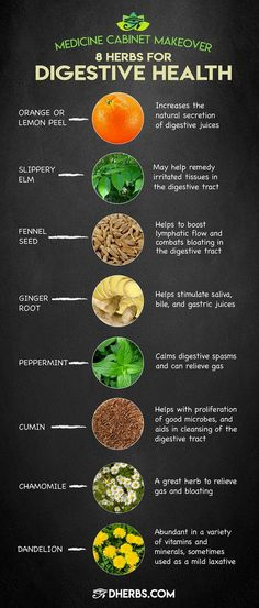 """Improve Digestive Health With These 8 Herbs """"If healthy digestion is what you seek, it has to start with the food you eat."""" Read more about these herbs that work for digestive health on. Herbal Remedies, Health Remedies, Home Remedies, Stomach Ulcers, Coconut Health Benefits, Leaky Gut, Natural Cures, Natural Treatments, Natural Life"""