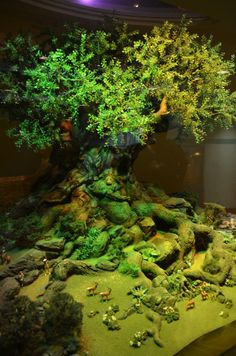 Tree of Life Model