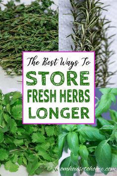 To keep parsley, cilantro, basil and other fresh herbs from going bad so quickly, find out the best ways to store fresh herbs longer. #fromhousetohome #gardening #herbgarden  #herbs