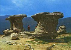 """Babele sunt formatiuni stâncoase situate în apropiere de vârful Baba Mare (2292 m), situat în masivul Bucegi din Carpatii Meridionali.  Babele sunt """"martori de eroziune"""", formate prin erodarea eoliana diferentiata a diferitelor strate geologice în care sunt sculptate. Places Worth Visiting, Places To Visit, Rock Sculpture, Gothic Horror, Tourist Places, Central Europe, Amazing Grace, Dark Fantasy, Mount Rushmore"""