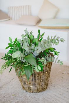 Botanical Wedding, Wicker Baskets, Herbs, Wedding Ideas, Plants, Home Decor, Decoration Home, Room Decor, Herb