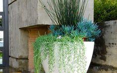 pot de fleurs en blanc pour la terrasse extérieure