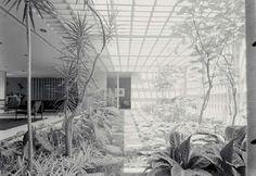 Clássicos da Arquitetura: Residência Castor Delgado Perez / Rino Levi