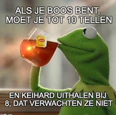 You've probably stumbled across memes of Kermit the frog sipping tea, unsure of its actual meaning. But when you're someone who really loves to gossip and needs the perfect image to sum it up, the Kermit tea meme is perfect for you. Kermit The Frog Meme, Funny Kermit Memes, Funny Humor, Memes Humor, Funny Stuff, Funny Quotes, Sarcastic Quotes, Gym Humor, Funny Cartoons