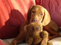 With his bear, nice and fluffy!