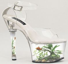 Weird shoes. Hopefully not for wearing, especially if fish are real.